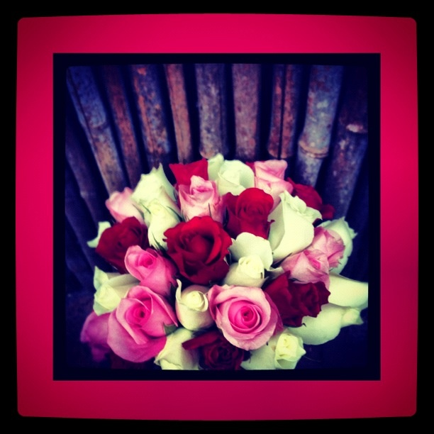 Rose hand tied bridesmaid bouquet By www.sapphiredesigns.com.au