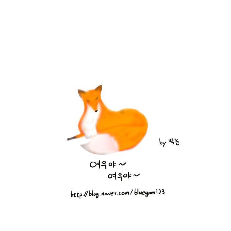 여우, fox