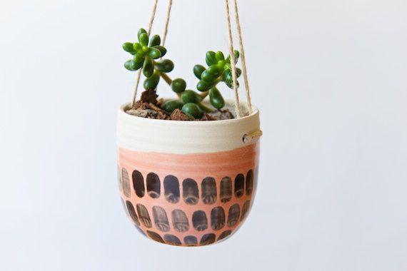 Hängende Pflanzer Indoor Pflanzer sukkulente Kaktus von RossLab