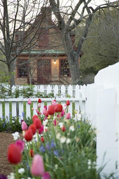Historic Gardens - Spring at Colonial Williamsburg, VA.