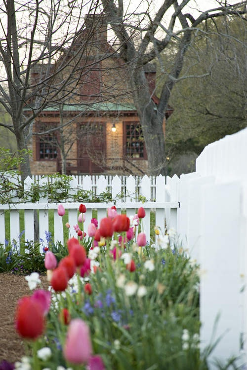 Historic Gardens - Spring at Colonial Williamsburg, VA.