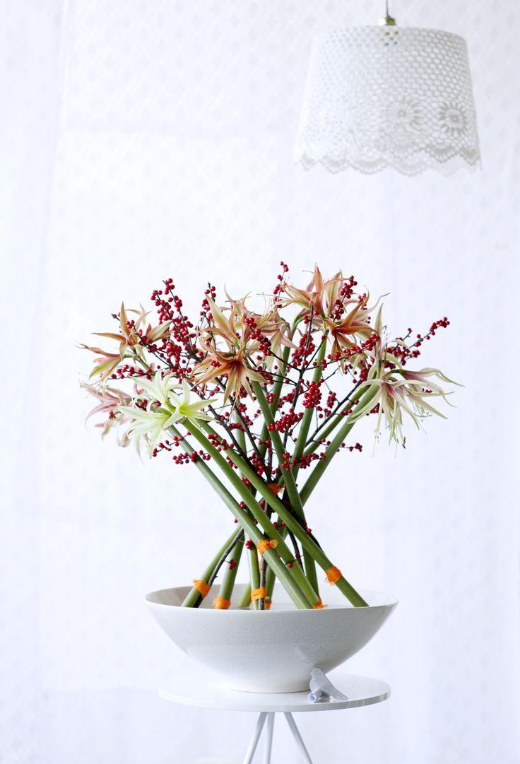 A beautiful and creative Amaryllis arrangement #flowers #interiors