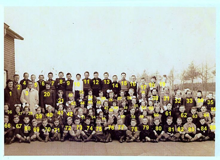 Drop Box - john JANSEN - Picasa Web Album, OUR SCHOOL  AND PUPILS IN 1954 , AT OUR 3 ROOM SCHOOL , IN THE COUNTRY, IN  ASTENSE PEEL  IN 1954 , IN THE NETHERLANDS   !!