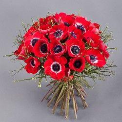 Букеты из анемон   Интернет-магазин цветов Вам Букет!