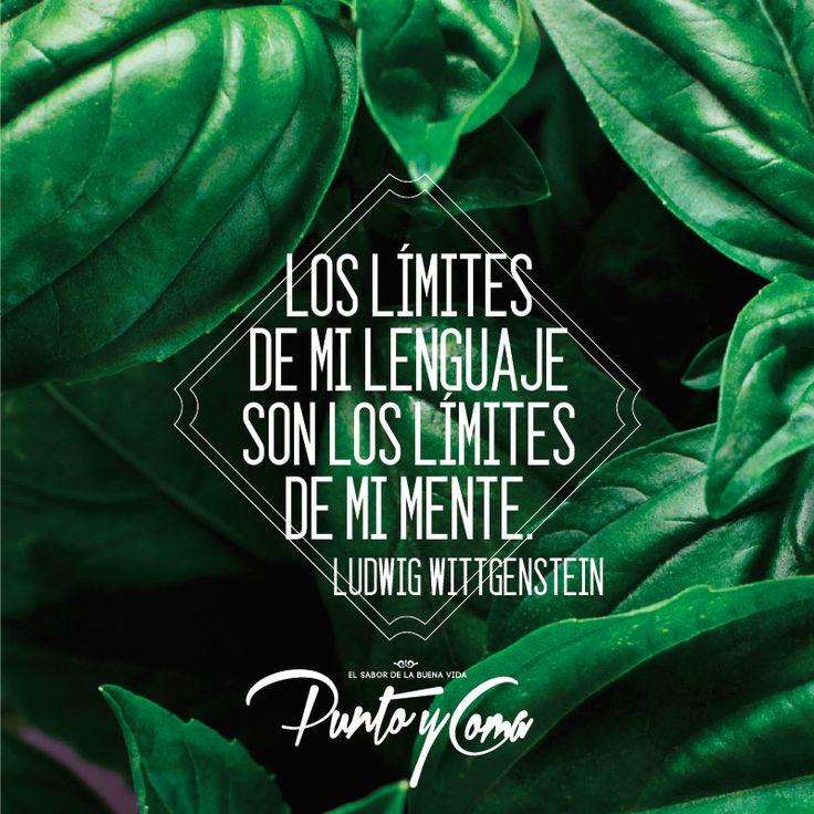Los límites de mi lenguaje son los límites de mi mente. — Ludwig Wittgenstein