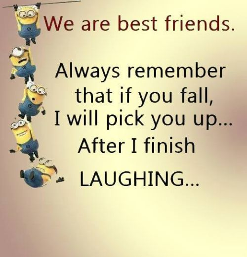 We are best friends.  Always remember that if you fall, I will pick you up...after I finish LAUGHING... - minions