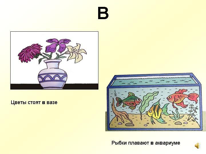 В = in De bloemen staan in de vaas. De vissen zwemmen in het aquarium.