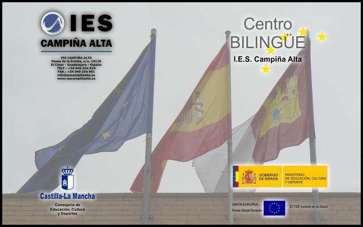 Nuestro webmaster ha desarrollado la página web del Instituto Campiña Alta.
