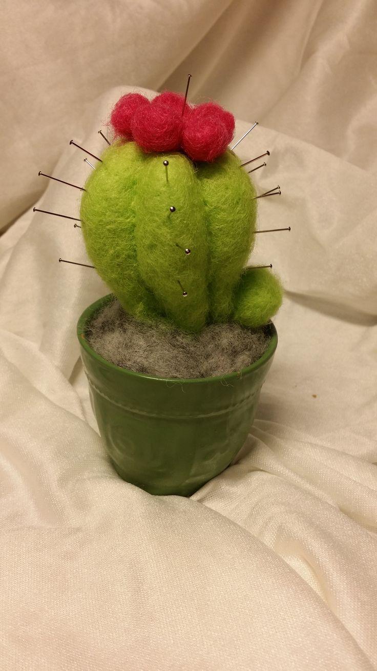 nålepute,kaktus, nålefiltet