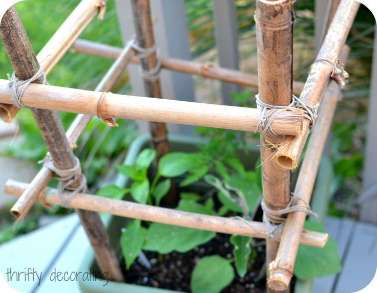 Thrifty Decorating Bamboo Tomato Stakes Gardening Ideas 400 x 300
