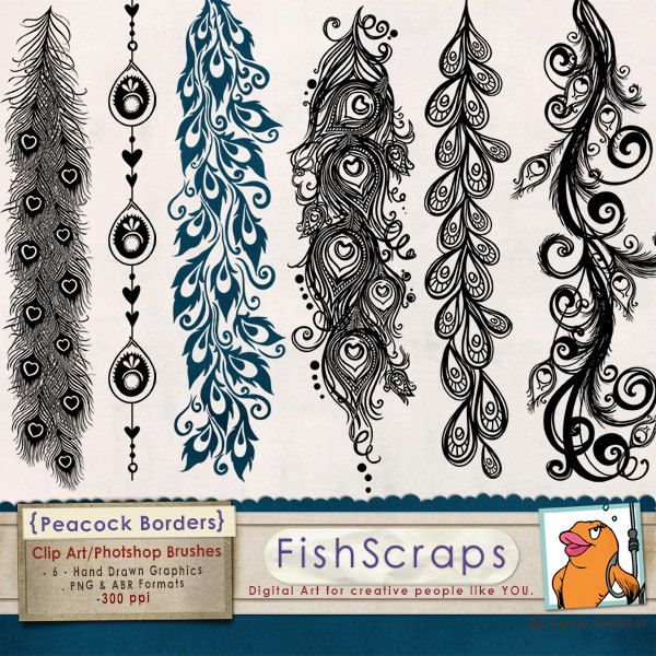 Peacock Flourish Borders - Clip Art  &  Photoshop Brushes for Scrapbooking,