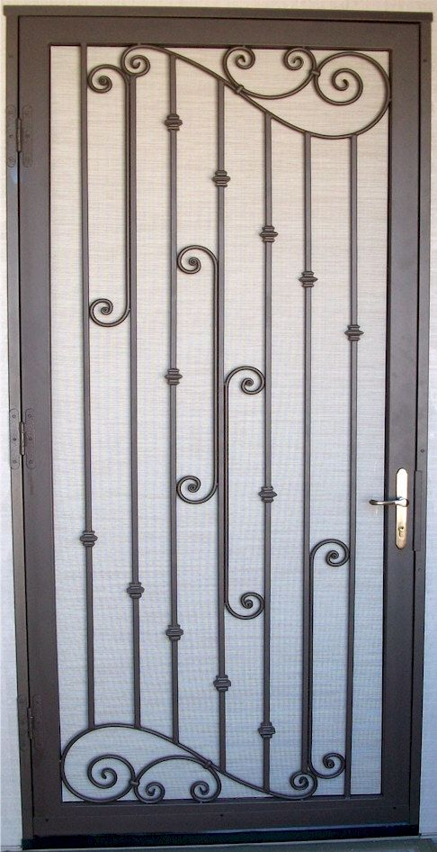 Decorative iron security door.  Design your door and find a local metal fabricator to weld it for you!