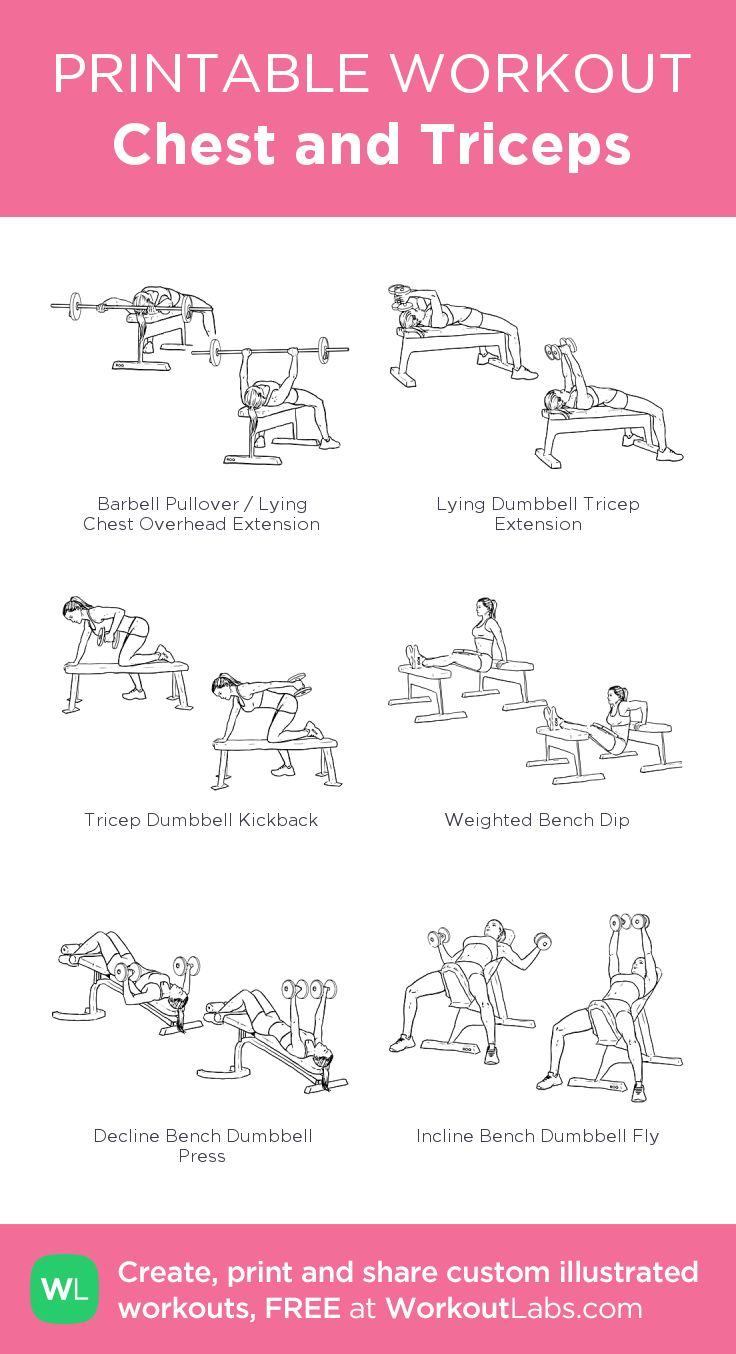 chest n triceps workout - 736×1354