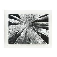 Signature Design by Ashley Black and White Ananya Wall Art   KyberZoo.com #MegaSmart #SmartStore #AffordablePrice #SmartSave #SmartHome #BadCredit #GoodCredit #Finance #MegaSmartSuperStore #ShopTiLYouDrop #KyberZoo #CoasterFurniture #Coaster #Signiture #AshleyFurniture #OutDoor #Office #LivingRoom #EquisiteDesign #EntertainmentRoom #BarRoom #Accents #ShowCase #Furniture #New #SuperSmart #Geeks #Discount #Clearence #PandaTeam