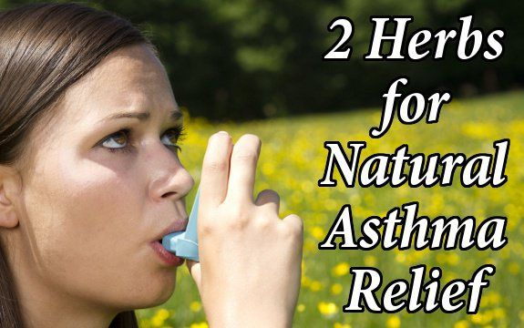 Looking for a natural solution for asthma, COPD, or bronchitis? Here are 2 great herbal remedies for lung issues and chronic bronchial problems.