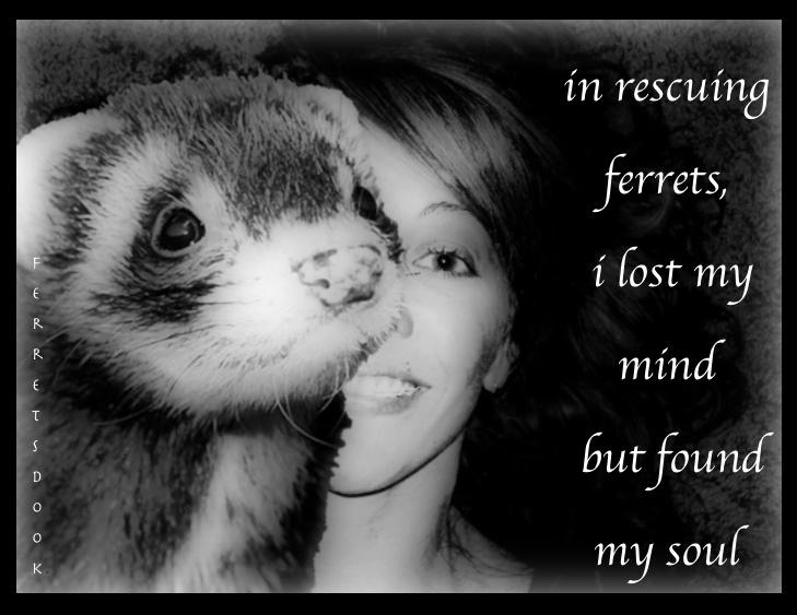 Rescuing ferrets!