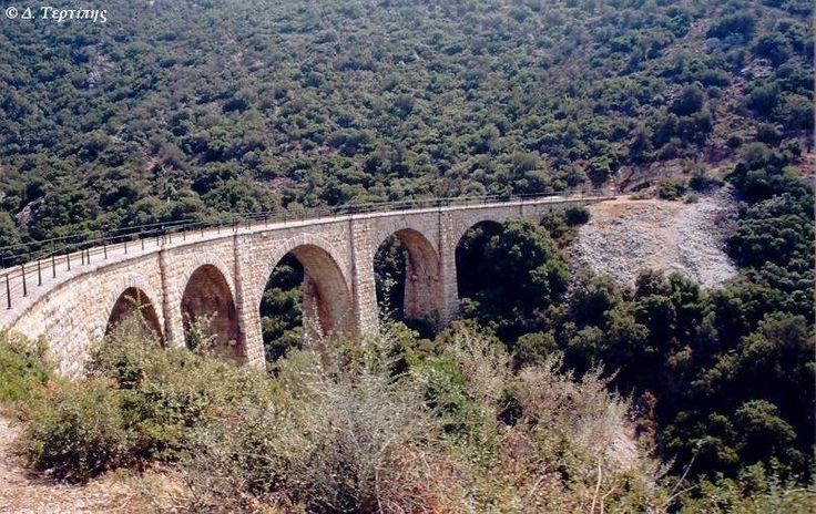 AnoLechonia_bridgeIIIa.jpg (803×507)