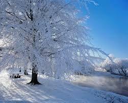 Resultado de imagen para paisajes de nieve