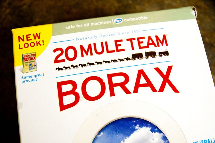 how to kill fleas with 20 mule team borax dr who gov 39 t mule and tile. Black Bedroom Furniture Sets. Home Design Ideas