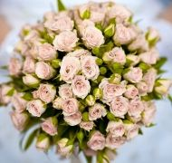 Rose Glory Bridal Bouquet - Rose Glory Bridal Bouquet > View Full-Size Imag...   Glory, Rose, Bouquet, Aud, Purchased   Bunches