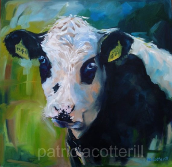 Moo original oil painting by Patricia Cotterill by pcotterill,: Originals Oil, Artists, Oil Paintings, Animal Paintings, Wraps Canvas, Canvas Art, Art Prints, Patricia Cotteril, Moo Originals
