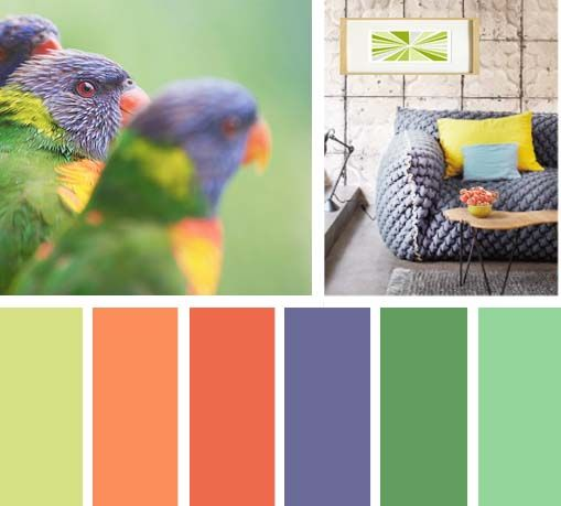 Paletas de color, verde, morado, naranja, sala, sofa comodo, relajado img_LEMONBE_pericos_color_divertido_sala_OCTUBRE2013_03