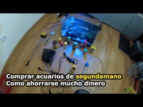 COMPRAR ACUARIOS BARATOS DE SEGUNDA MANO , LA MEJOR OPCION - YouTube