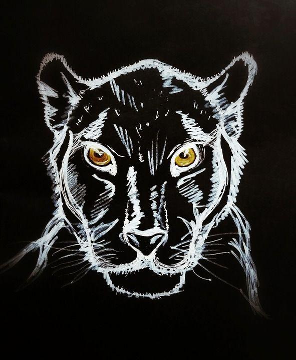Gratis Billede Pa Pixabay Black Panther Figur Sort Baggrund Svart Panter Dyretegninger Panter