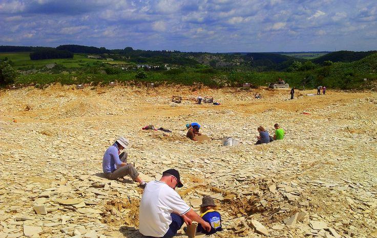 Fossilienbesuchersteinbruch in Mühlheim