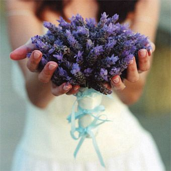 Worried about feeling nervous on the big day? This gathering of Spanish lavender tied with a delicate band of eggshell blue silk velvet is sure to relax your nerves—the flower will release a calming aroma as your hands warm the stems, Mindy Rice, mindyrice.com.
