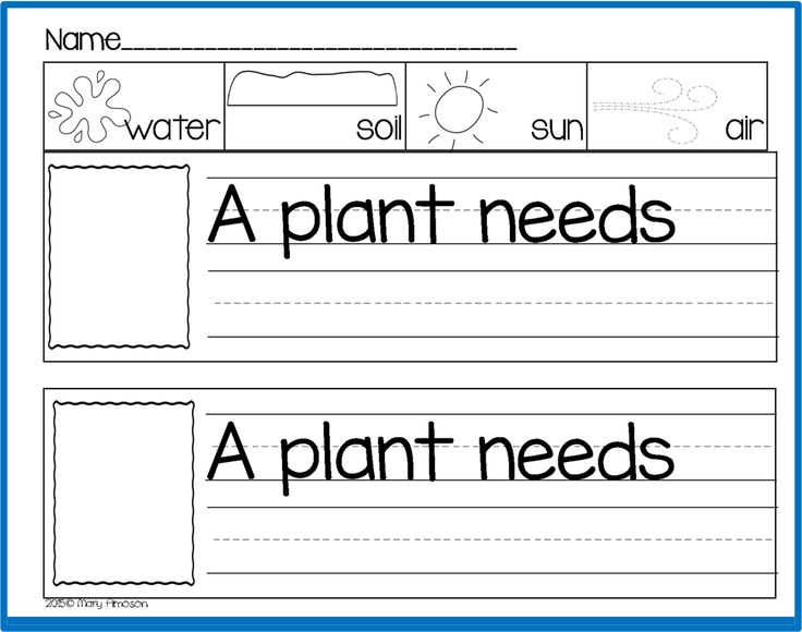 396 best plants unit images on pinterest gardening plants and school gardens. Black Bedroom Furniture Sets. Home Design Ideas