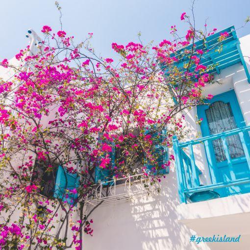 Beyaz badanalı evleri,cam önlerindeki begonvil ve sardunya  çiçekleri,çivit mavisine boyalı pencere ve kapılarıyla süslü Yunan Adaları'nda huzur dolu bir yaz tatili geçirmek istemez misiniz?