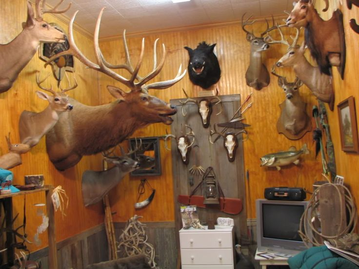 Trophy Room Services at Northeast Taxidermy Studios