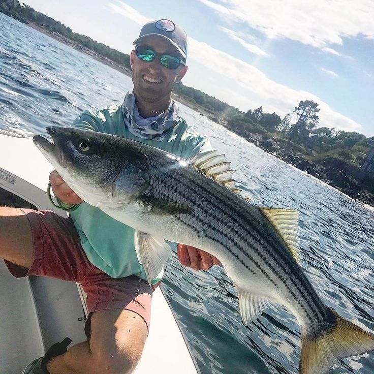 Sunday Scaries implies a cessation of boozing... something the Tipsy Tuna Boys k... - https://northeast.skifflife.com/186068/sunday-scaries-implies-a-cessation-of-boozing-something-the-tipsy-tuna-boys-k/