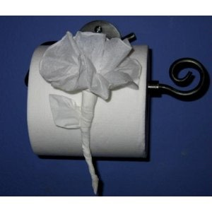 47 best toilet paper origami images on pinterest toilet paper toilet paper origami part of me wishes i had that much time on my hands mightylinksfo
