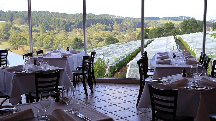 PARINGA Vineyard restaurant