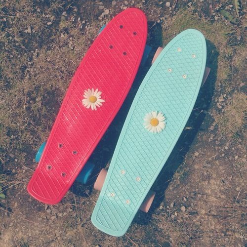 Penny board with my favourite flower.
