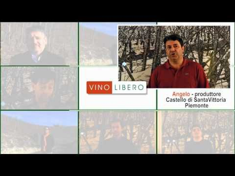 Vino Libero Official Video