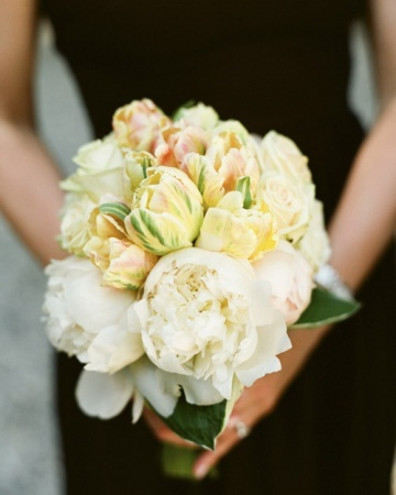 Pastel Bouquet, This bouquet of Dutch parrot tulips and white peonies is set off by a collar of hosta foliage.