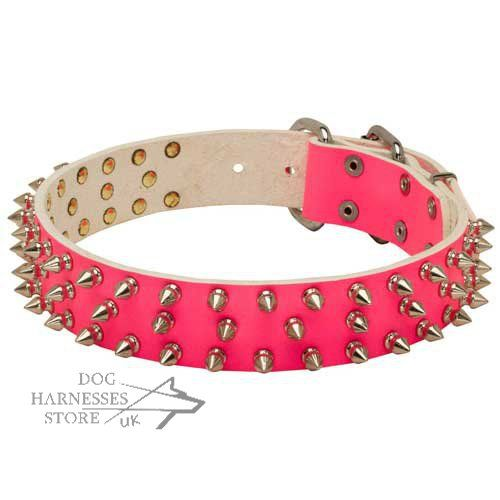 Pink spiked dog collar for female dog walking