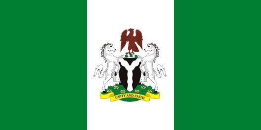 Queen of the Naija Blog: 9 Nigerian Students kidnapped in Ukraine released ...