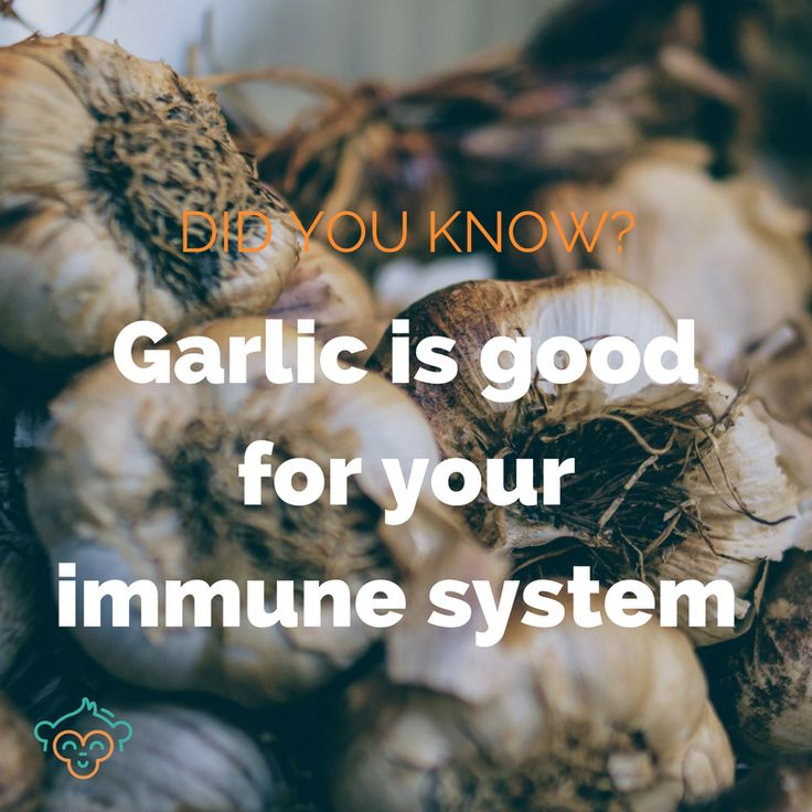 Research has found garlic to be a good preventative medicine agains coughs, colds and chest infections. It can also help fight infections that are already in your body. #garlic #healthfacts #wellbeing #winter #coldandfluremedies #immunesystem #didyouknow #didyouknowfacts #LifeBuddi