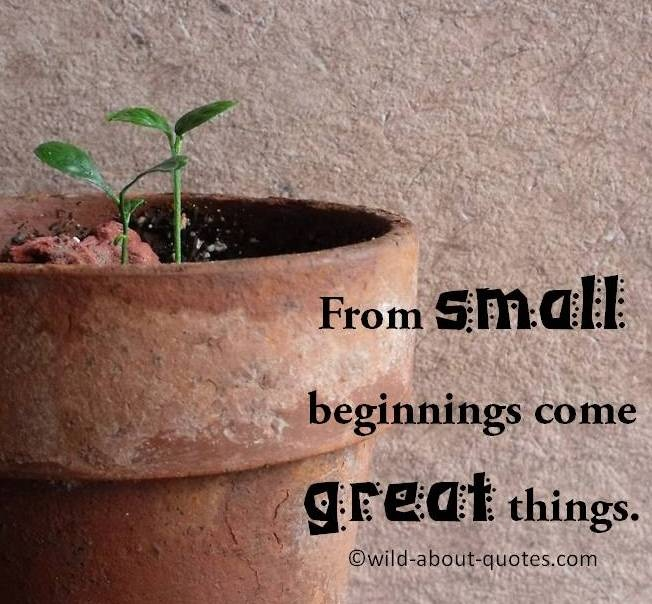 Small Great Things Quote: From Small Beginnings Come Great Things.