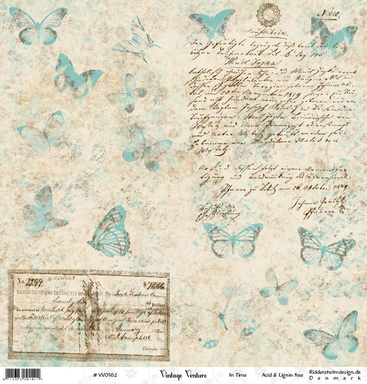 Butterflies on white with writing