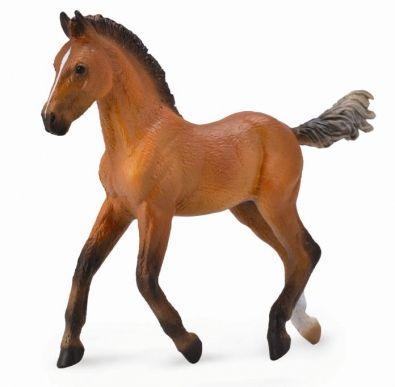 Hanoverian Foal - Bay - 88734