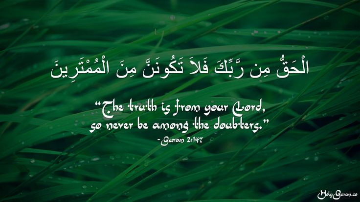 """""""The truth is from your Lord, so never be among the doubters."""" - Quran 2:147"""