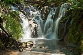 Olinda Falls...dandenong ranges -