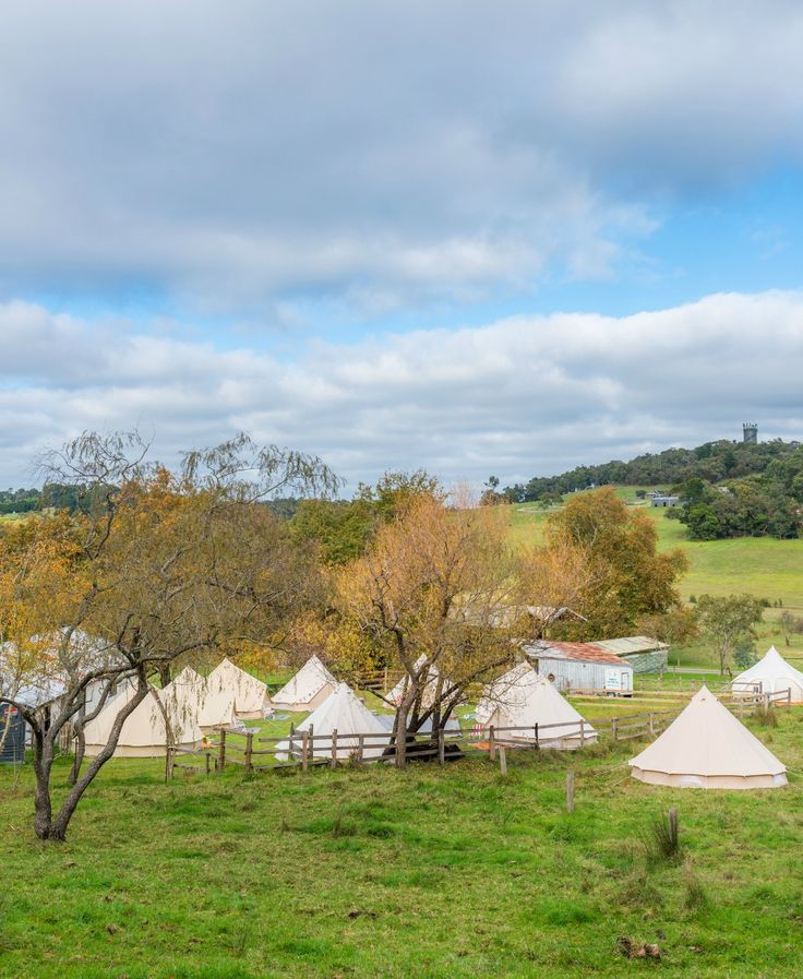 Glamping in Upper Beaconsfield on a gorgeous private property.