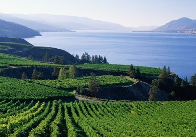 Okanagan Valley, British Columbia, Canada. Wine country.