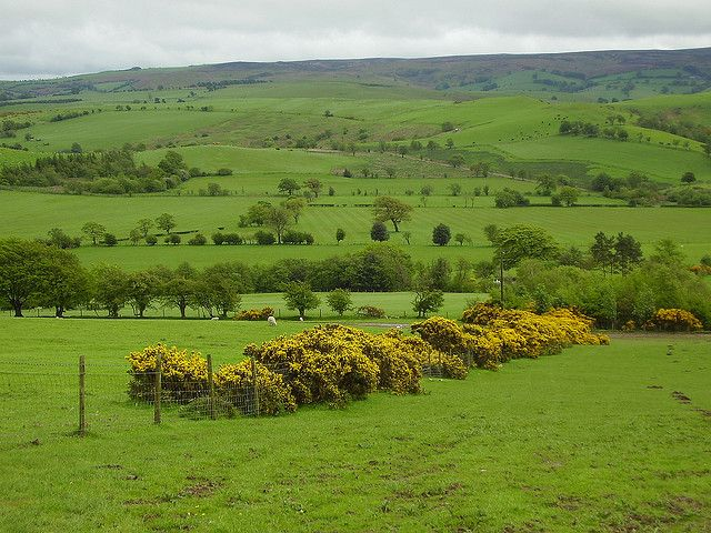 Wales 2006 | Flickr - Photo Sharing!